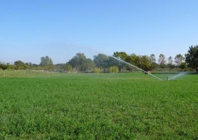 irrigation agricole de prairie