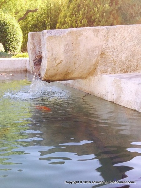 Fontaines et a rateurs sokoloff environnement for Bassin ornement